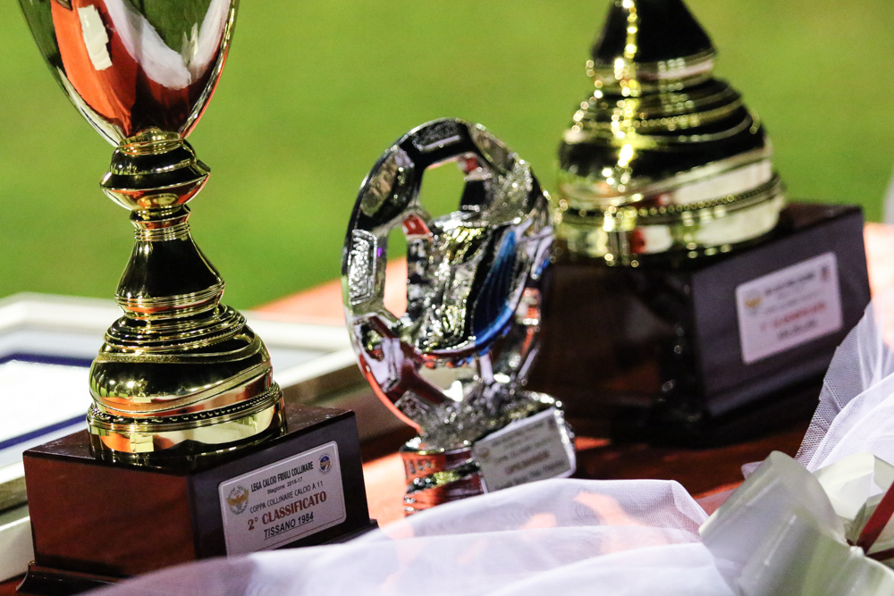 Trofeo regionale Lcfc