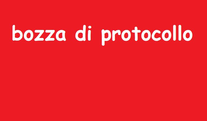 Bozza di Protocollo